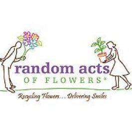 Spotlight on 'Random Acts of Flowers'