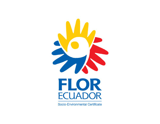 You are currently viewing FlorEcuador: Keeping Ecuador's Roses the Best
