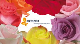 Preesman: Breeding a Colorful Future