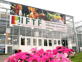 IFTF 2013 Wraps Up in Holland!
