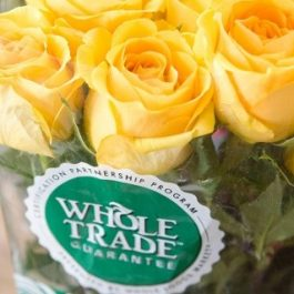 Fresh Roses: A Supermarket's Secret Weapon