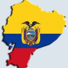 Ecuador's Cut Flower History