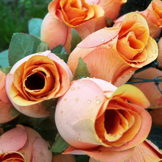 Colors of Spring Wholesale with Flowerlink!