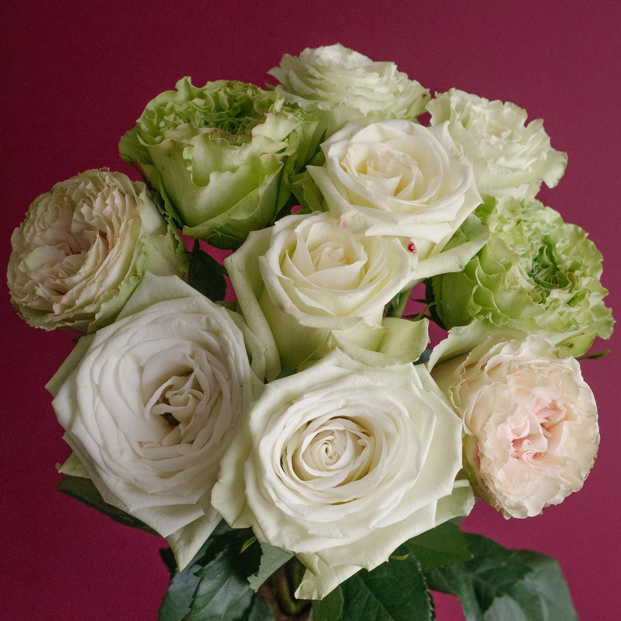 Popular Green Rose Varieties
